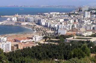 Inversión rentable y segura: desarrollo inmobiliario en Argelia